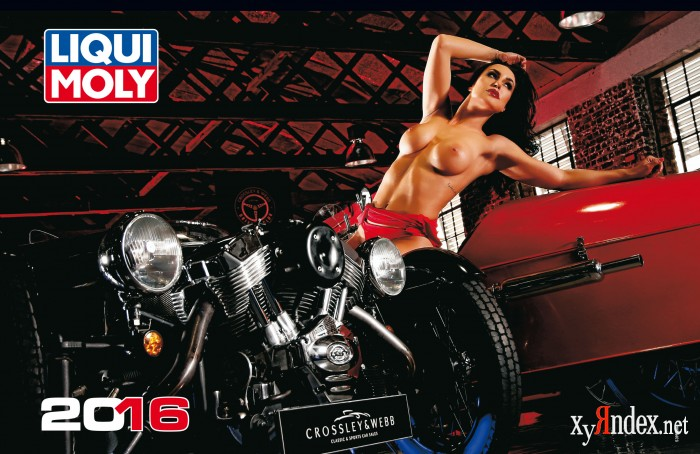 Liqui Moly. Official Calendar 2016. Version 2.0 (13 фото)