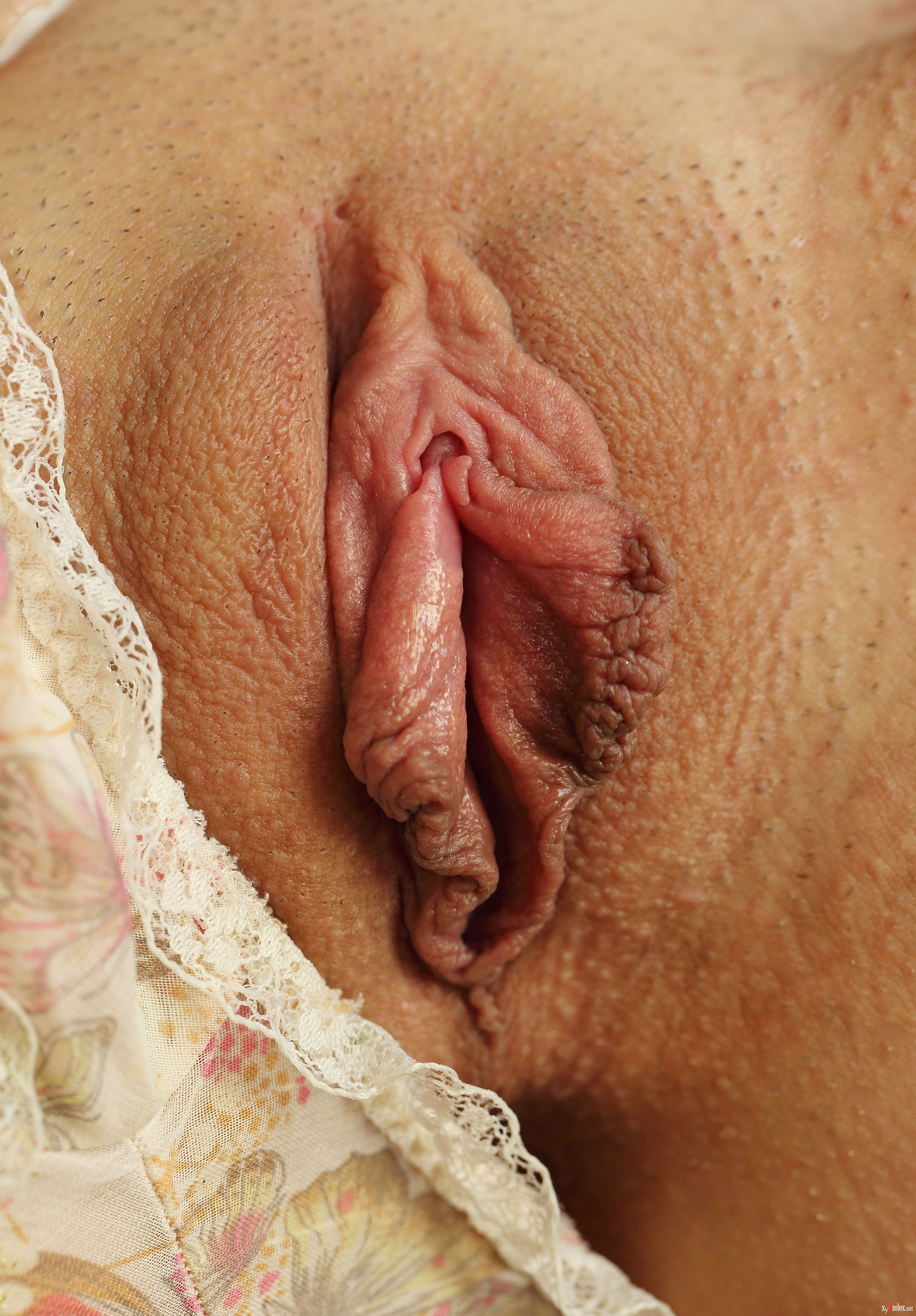 Susies pussy 11