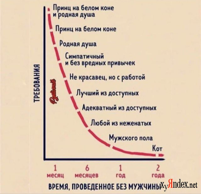 1609159806_205700_6_trinixy_ru.jpg