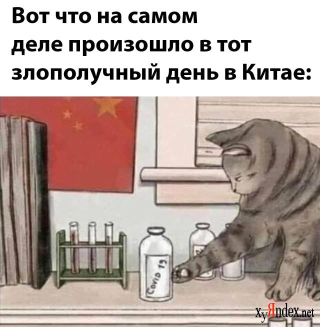 Фотоподборка (30 фото)